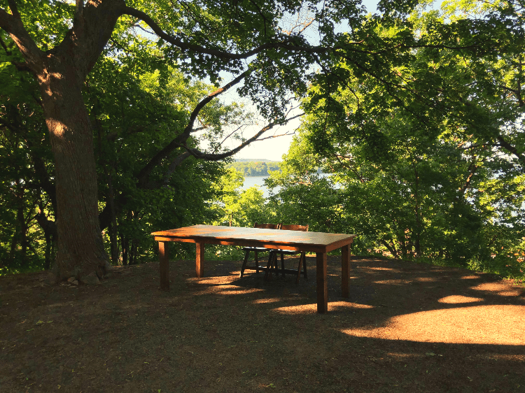wood table in the forest