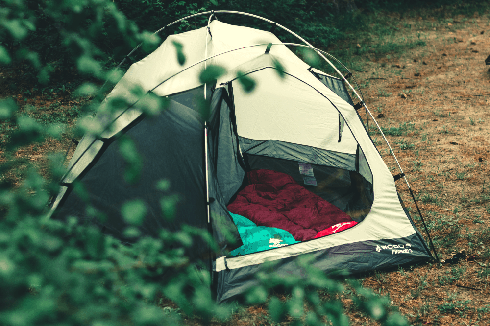 tent with sleeping bags next to tree