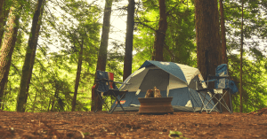 larger tent in the forest