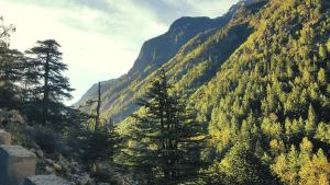 green mountains himalayas