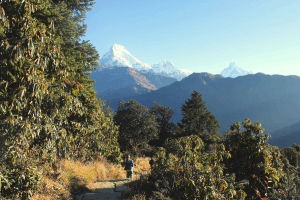 hiking nepal mountains