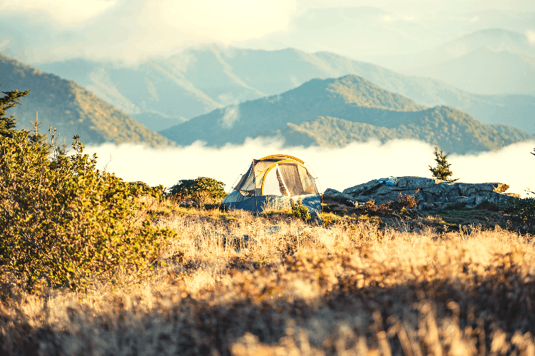 single tent for camping alone in nature