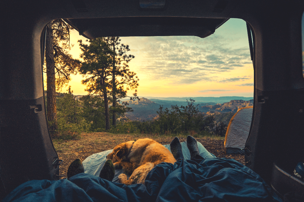 two people sleeping in their car out in nature