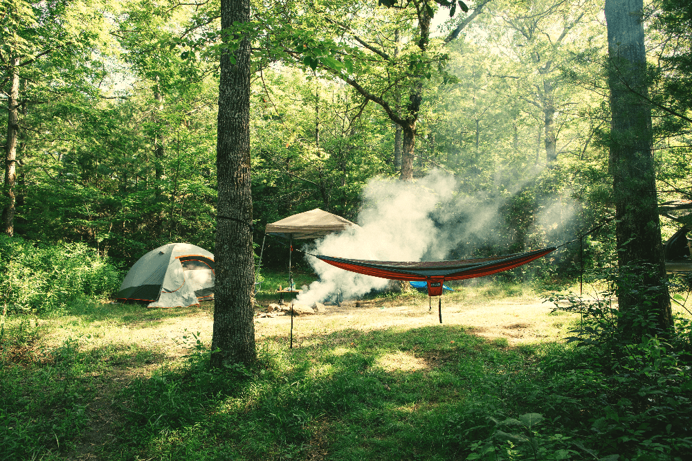 tent and hammock in the wild