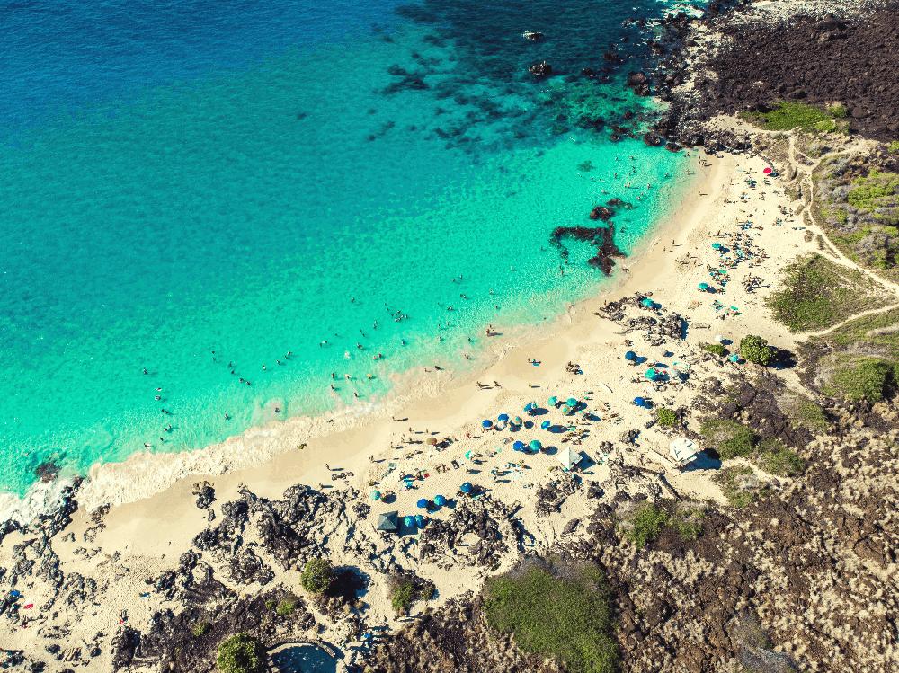 aerial view of a beach and ocean