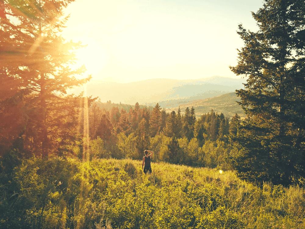 man walking through the forest in utah