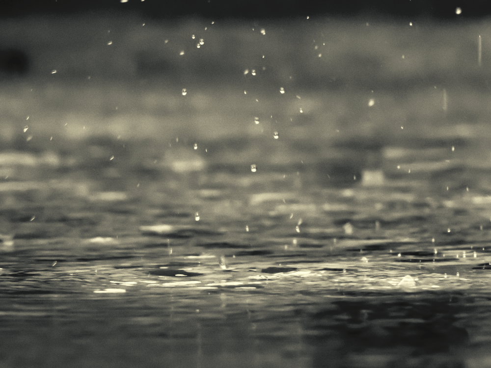 raindrops falling on a puddle