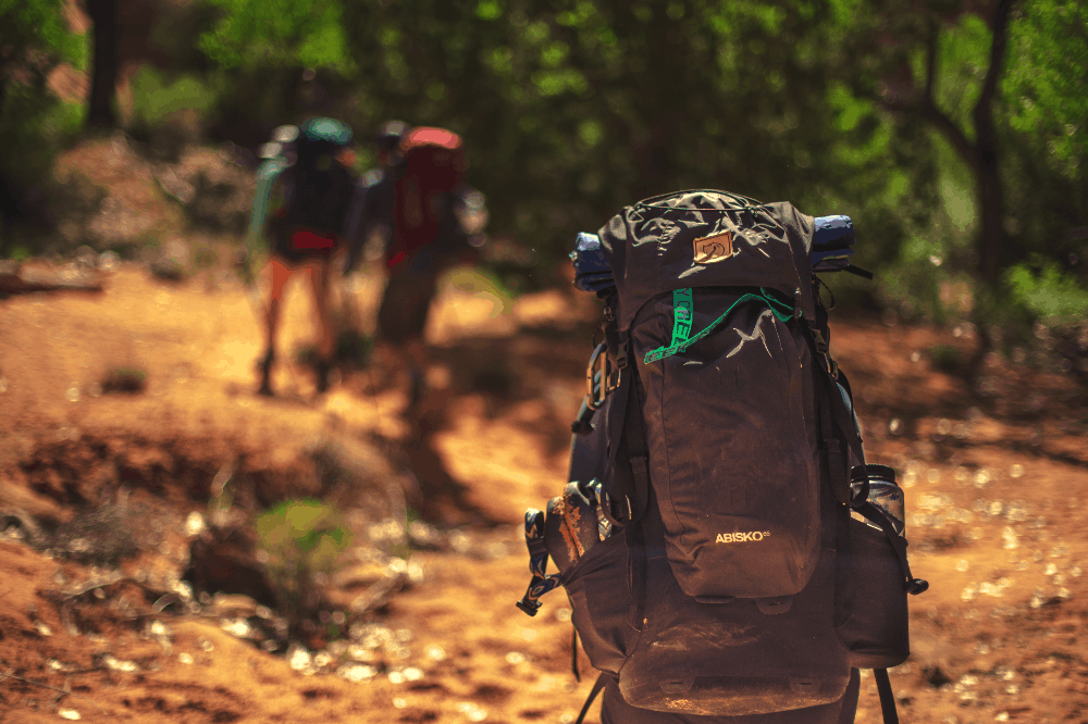 people trekking through the wild with backpacks