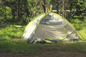 pitched tent in a grassy field