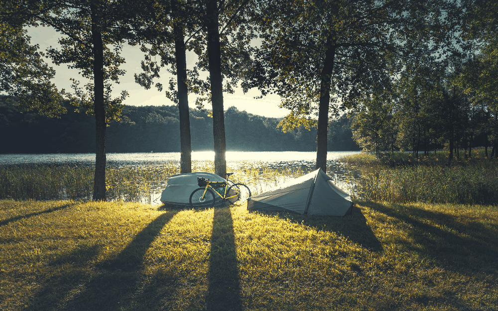 tent and bike set up next to trees and a lake