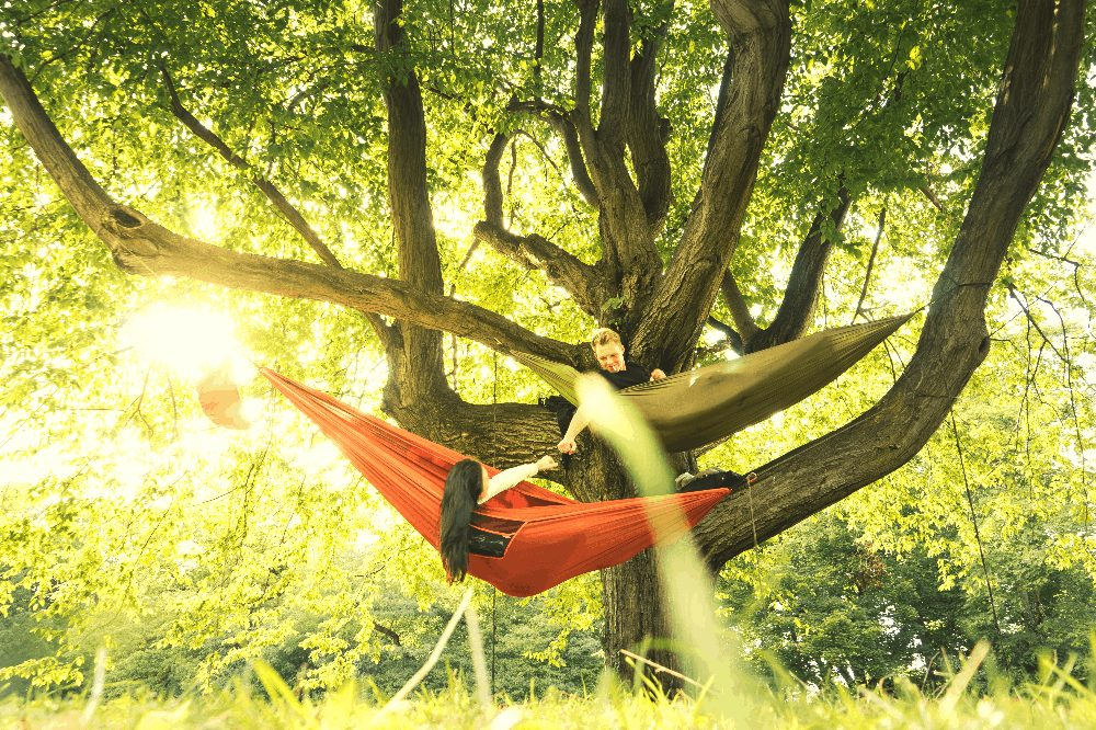 a man and woman in a hammock in a tree at sunset