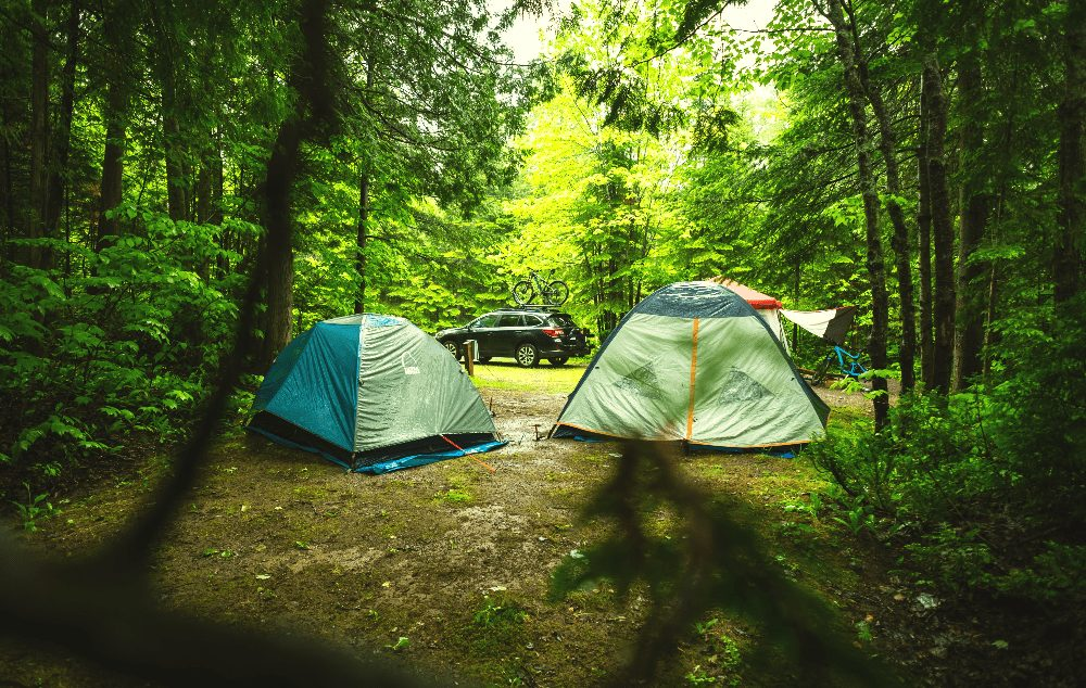 two tents pitched in a forest next to a truck and bike rack
