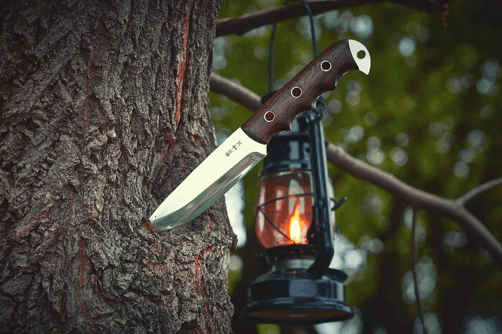 knife in a tree next to a lantern